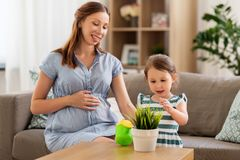 Pregnant mother and daughter with home plant royalty free stock photo