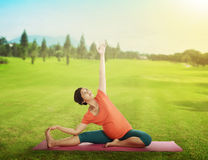 Pregnant mother doing yoga at the green grass Stock Images