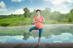 Pregnant mother doing yoga at the lake Royalty Free Stock Image