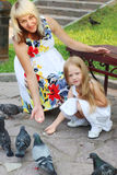 Pregnant mother and little daughter feed pigeons in summer Stock Photos