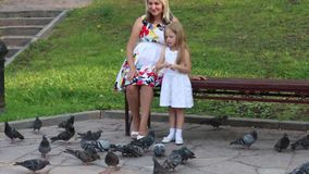 Pregnant mother and little daughter feed pigeons stock video footage