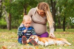 Pregnant mother with little son playing with pet in park Royalty Free Stock Photo