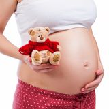 Pregnant mother showing her belly and holding a teddy Stock Images