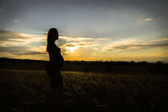 Pregnant mother silhouette during maternity shoot. With sunset stock photo