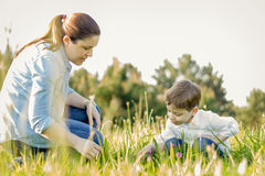 Pregnant mother and son picking flowers in a field Royalty Free Stock Image