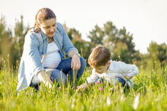 Pregnant mother and son picking flowers in a field stock image