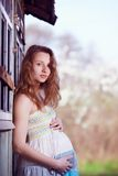 Pregnant in nature Royalty Free Stock Photo