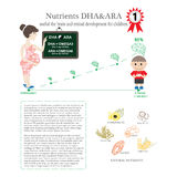 Pregnant. Nutrients DHA & ARA useful the brain and retinal devel. Pregnant. Nutrients DHA & ARA useful the brain and retinal development for children Stock Photos