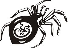 Pregnant spider vector illustration