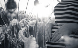 The pregnant is waiting for little sun. She is waiting for her new small sun Royalty Free Stock Images