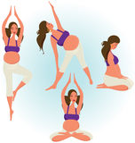 Pregnant woman. Who is exercising with yoga Stock Photo