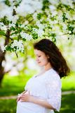 Pregnant woman Royalty Free Stock Photos