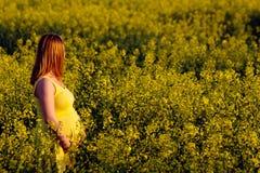 Pregnant woman. Among yellow flowers Stock Image