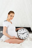 Pregnant woman. Stock Images