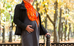 Pregnant woman in autumn park Royalty Free Stock Photo
