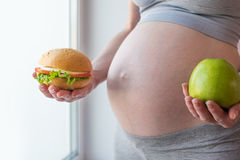 Pregnant woman belly holding a plate with junk and healthy food. Concept choice of diet during pregnancy. A pregnant woman belly holding a plate with junk and royalty free stock photo