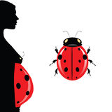 Pregnant woman with belly and illustration ladybug Royalty Free Stock Photos