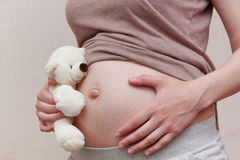 Pregnant woman belly with teddy bear Royalty Free Stock Image
