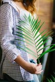 Pregnant woman with a branch of a green fern in her hands. Eco lif. Young beautiful pregnant woman in blue jeans and a light shirt. Pregnant woman with a branch Stock Images