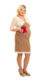 Pregnant woman in brown dress with red bow. White background royalty free stock photography
