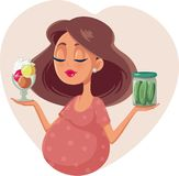 Pregnant Woman Choosing Between Ice Cream And Pickles Cartoon Illustration Stock Images