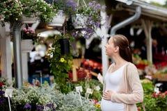 Pregnant woman choosing flowers at street market Royalty Free Stock Photos
