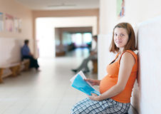 Pregnant woman  at the clinic Royalty Free Stock Images