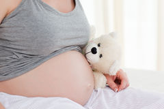 Pregnant woman with a cuddly toy Stock Photography