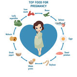 Pregnant woman diet infographic Royalty Free Stock Photo