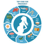 Pregnant woman. Diet infographic. Silhouette of  and  foods for pregnancy Royalty Free Stock Photos