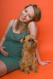 The pregnant woman and dog Royalty Free Stock Image