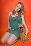 The pregnant woman and dog Stock Image