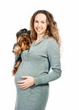 Pregnant woman with the dog Royalty Free Stock Image