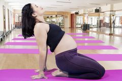 Pregnant woman doing yoga exercise. Side view of pregnant woman wearing sportswear while doing yoga exercise. Shot in the gym center royalty free stock image