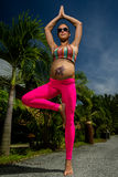 Pregnant woman doing yoga Stock Photography
