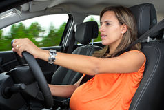 Pregnant Woman Driving a Car Stock Photography