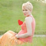 Pregnant woman enjoying summer park Stock Image
