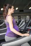 Pregnant woman exercising on a treadmill Royalty Free Stock Image
