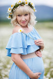 Pregnant woman in a field of blooming white daisies Royalty Free Stock Image