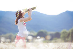 A pregnant woman in a field with a bouquet of white daisies Stock Photography