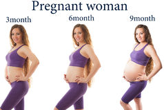 Pregnant woman fitness at different stages. Of pregnancy on white background. The concept of Sport and Health royalty free stock image