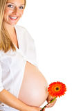 Pregnant woman with flower Royalty Free Stock Photo