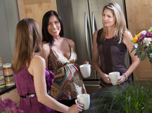 Pregnant Woman With Friends Stock Image