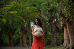 A pregnant woman Stock Image