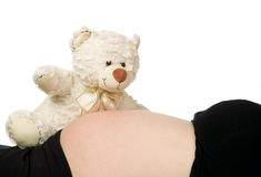 Pregnant hold bear near belly Stock Photography