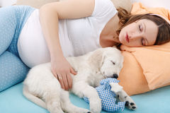 Pregnant woman with her dog at home Stock Images