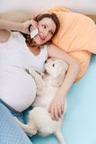 Pregnant woman with her dog at home Stock Photos