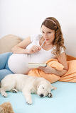 Pregnant woman with her dog at home Royalty Free Stock Images