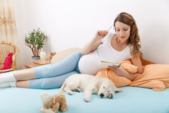 Pregnant woman with her dog at home Royalty Free Stock Photos