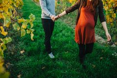 Pregnant woman and her husband hand by hand in vineyards. Autumn and yellow leafs royalty free stock images